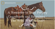 A Reminder to Data Privacy Consultants and Recruiters…The Wild West is Over
